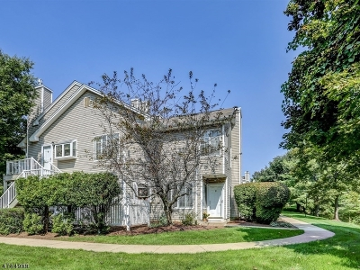 Bedminster Twp. Condo/Townhouse For Sale: 18 Stevens Ct