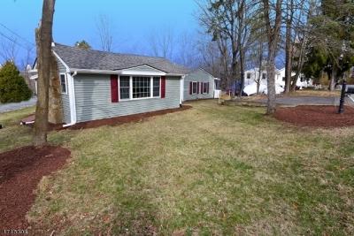 Randolph Twp. Single Family Home For Sale: 145 Park Ave