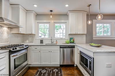 Millburn Twp. NJ Single Family Home For Sale: $649,000