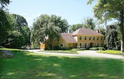 Bernardsville Boro Single Family Home For Sale: 46-2 Post Kennel Rd