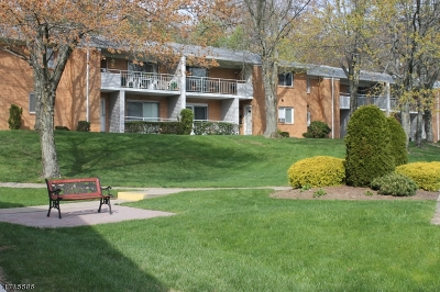 Parsippany Condo/Townhouse For Sale: 2350 Route 10, B7 #7
