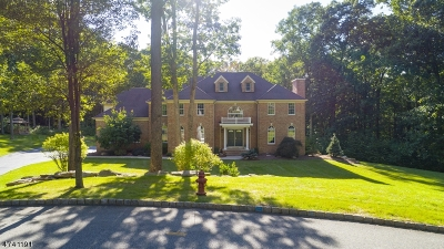 Randolph Twp. Single Family Home For Sale: 29 Shadowbrook Way