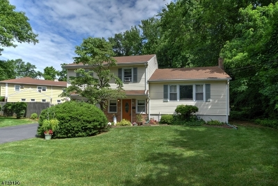 Scotch Plains Twp. Single Family Home For Sale: 2209 North Ave