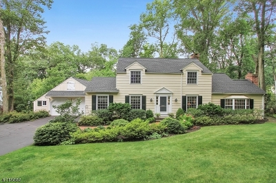Berkeley Heights Twp. Single Family Home For Sale: 36 Winchip Rd