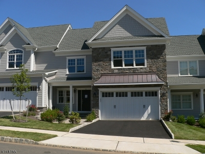 Warren Twp. Condo/Townhouse For Sale: 15 Park View Dr