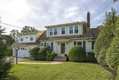 Morris Twp. Single Family Home For Sale: 29 Columbia Rd