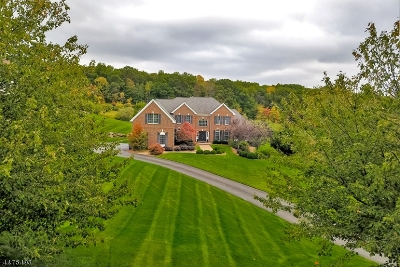 Mount Olive Twp. Single Family Home For Sale: 8 Southwind Dr