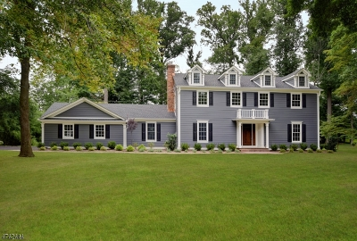 Scotch Plains Twp. Single Family Home For Sale: 24 Blackbirch Rd