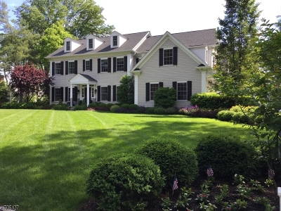 Chatham Twp. Single Family Home For Sale: 61 May Dr