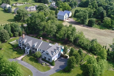 Tewksbury Twp. Single Family Home For Sale: 1 Hildebrant Rd