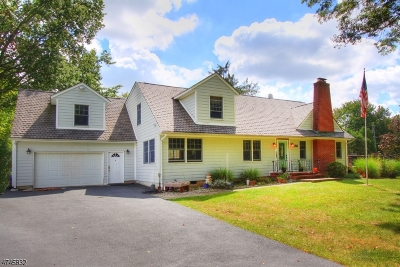 Bridgewater Twp. Single Family Home For Sale: 466 Bayberry Rd