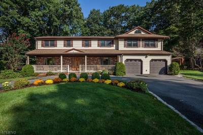 East Brunswick Twp. Single Family Home For Sale: 11 Lorraine Ct
