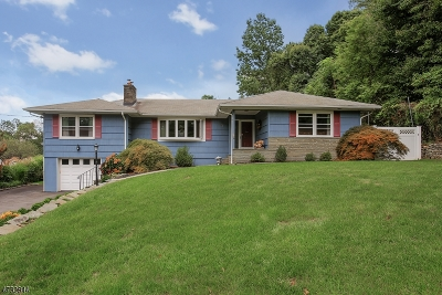 Mountainside Boro Single Family Home For Sale: 391 New Providence Rd