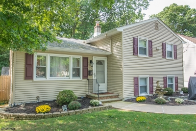 Parsippany-Troy Hills Twp. Single Family Home For Sale: 33 Glenwood Ave