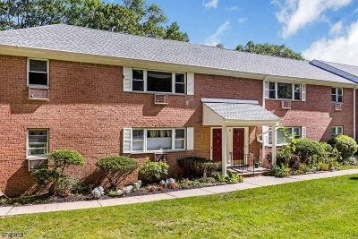 Parsippany-Troy Hills Twp. Condo/Townhouse For Sale: 2467 Route 10 #6B