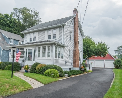 Morris Twp. Single Family Home For Sale: 7 Meslar Rd