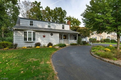 Morris Plains Boro Single Family Home For Sale: 20 Winding Way