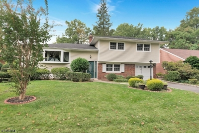 Rahway City Single Family Home For Sale: 940 Lakeside Dr