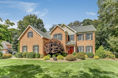 Chester Boro Single Family Home For Sale: 15 Ammerman Way