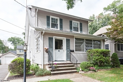 Fanwood Boro Single Family Home For Sale: 13 Chetwood Ter