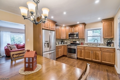West Orange Twp. Single Family Home For Sale: 46 Phyllis Rd