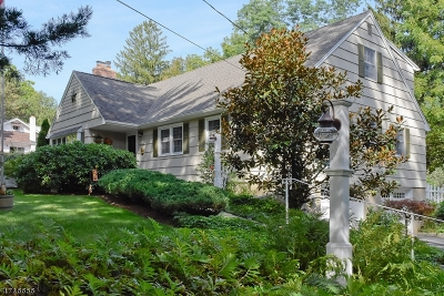 Parsippany-Troy Hills Twp. Single Family Home For Sale: 810 Park Rd