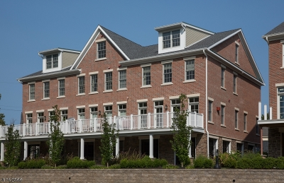 Frenchtown Boro Condo/Townhouse For Sale: 10 River Mills Dr #8