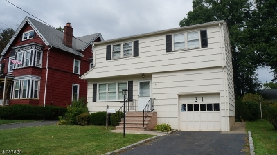 Roselle Park Boro Single Family Home For Sale: 31 E Grant Ave