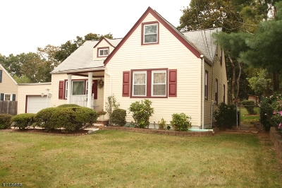 West Orange Twp. Single Family Home For Sale: 643 Mount Pleasant Ave