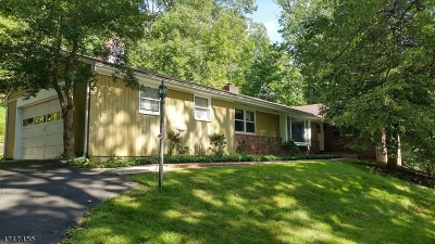 Bridgewater Twp. Single Family Home For Sale: 112 Branch Road