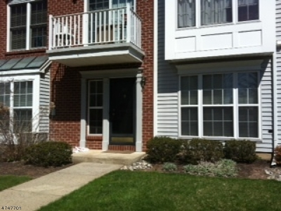 Bridgewater Twp. Condo/Townhouse For Sale: 4011 Riddle Ct