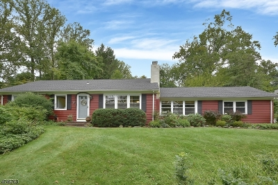 Morris Twp. Single Family Home For Sale: 2 Ferndale Ave
