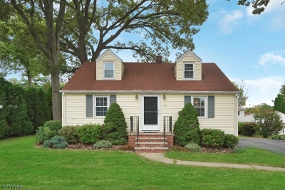 Parsippany-Troy Hills Twp. Single Family Home For Sale: 158 Hawkins Ave