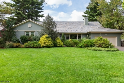 South Orange Village Twp. Single Family Home For Sale: 179 Glenview Rd