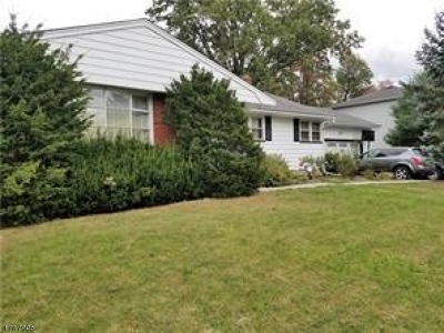 North Brunswick Twp. Single Family Home For Sale: 971 Driscoll Rd
