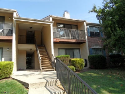 Bernards Twp. Condo/Townhouse For Sale: 105 Irving Pl #105