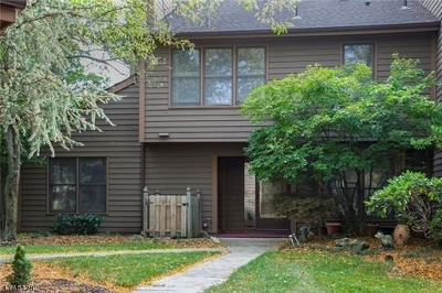 Edison Twp. Condo/Townhouse For Sale: 141 Maplewood Ct