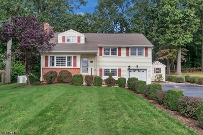 WATCHUNG Single Family Home For Sale: 377 Johnston Drive