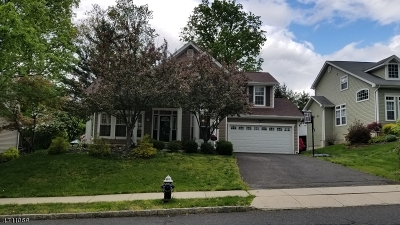 Bernards Twp. Single Family Home For Sale: 193 Smoke Rise Rd
