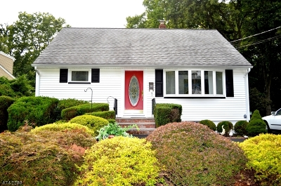 New Providence Boro Single Family Home For Sale: 19 Edward Ct