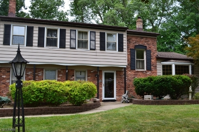 Parsippany Single Family Home For Sale: 33 Hidden Glen Dr