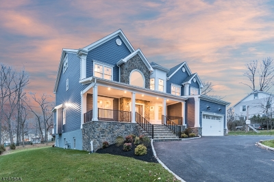 Berkeley Heights Twp. Single Family Home For Sale: 682 Plainfield Ave