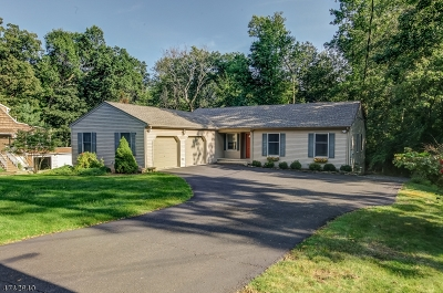 Warren Twp. Single Family Home For Sale: 40 Old Smalleytown Rd