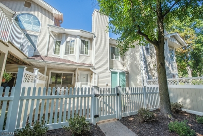 Bedminster Twp. Condo/Townhouse For Sale: 4 Evans Ct