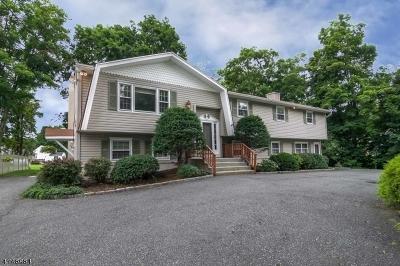 Randolph Twp. Single Family Home For Sale: 187 Park Ave