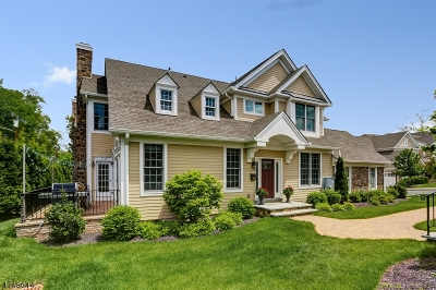 Essex County, Morris County, Union County Condo/Townhouse For Sale: 19 Woodstone Cir