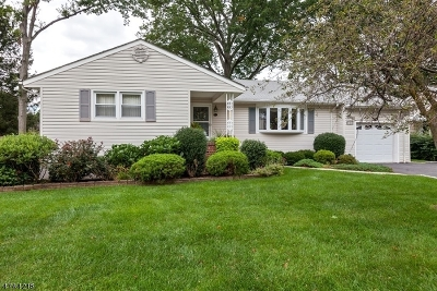 Cranford Twp. Single Family Home For Sale: 15 Davis St