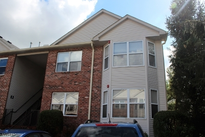 East Hanover Twp. Condo/Townhouse For Sale: 2 Millie Ln #2