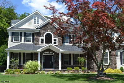 Mount Olive Twp. Single Family Home For Sale: 4 Seneca Ct