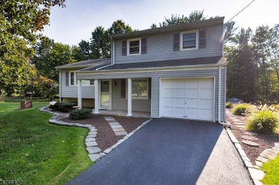 Bridgewater Twp. Single Family Home For Sale: 1684 Brookdale Drive